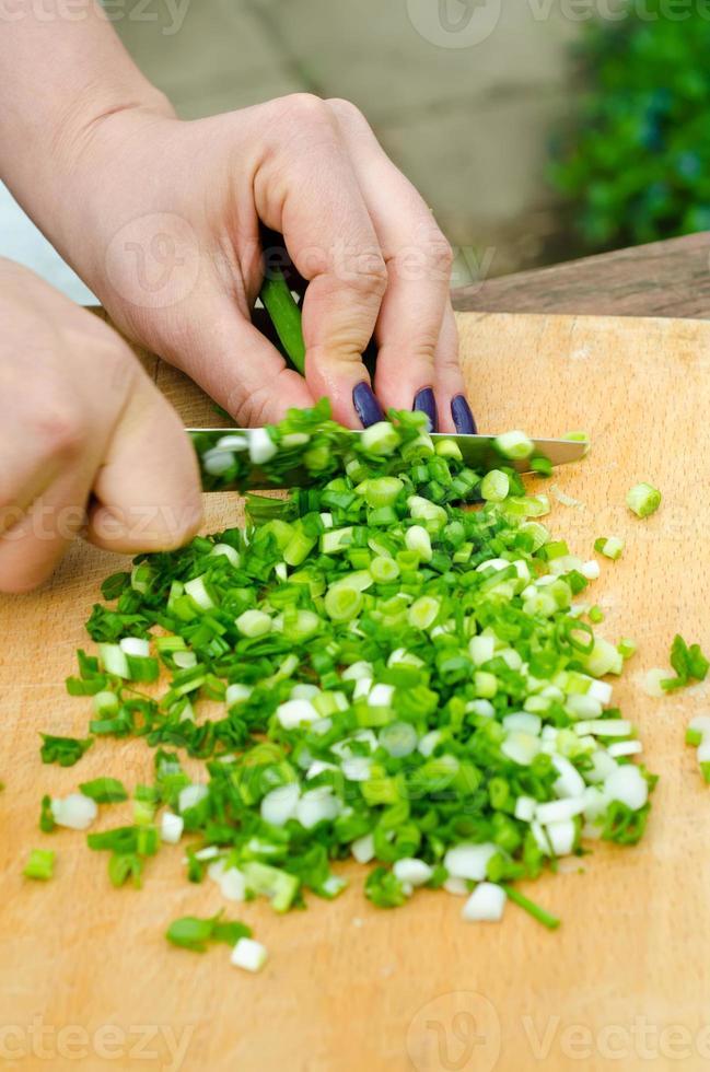 cebolla verde foto