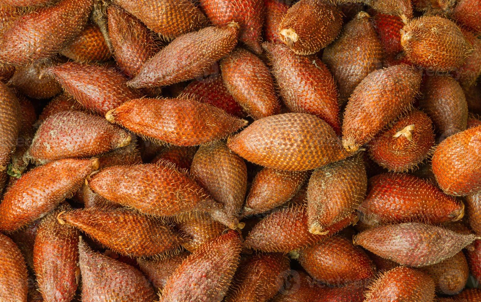 textura de salacca. foto