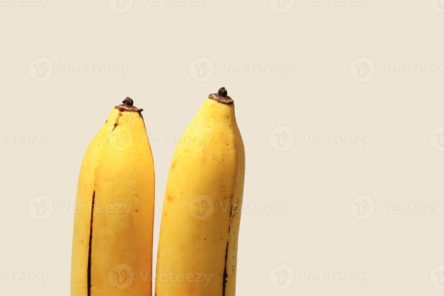 Two bananas isolated on cream background photo