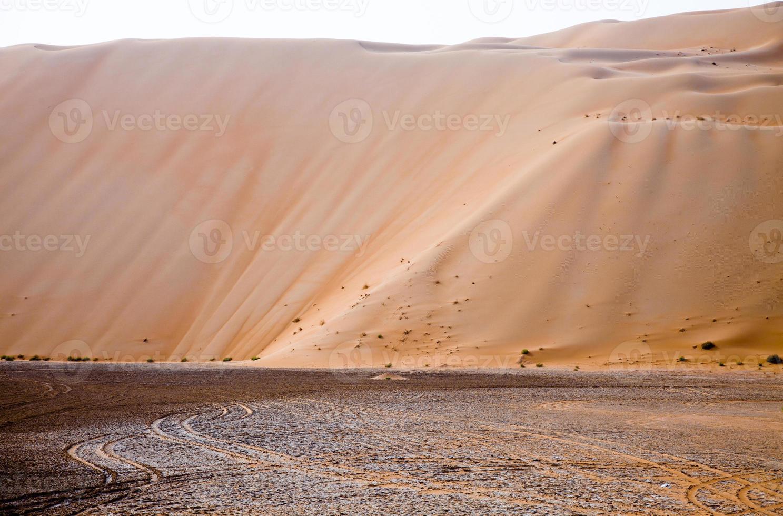 increíbles dunas de arena en liwa oasis, emiratos árabes unidos foto