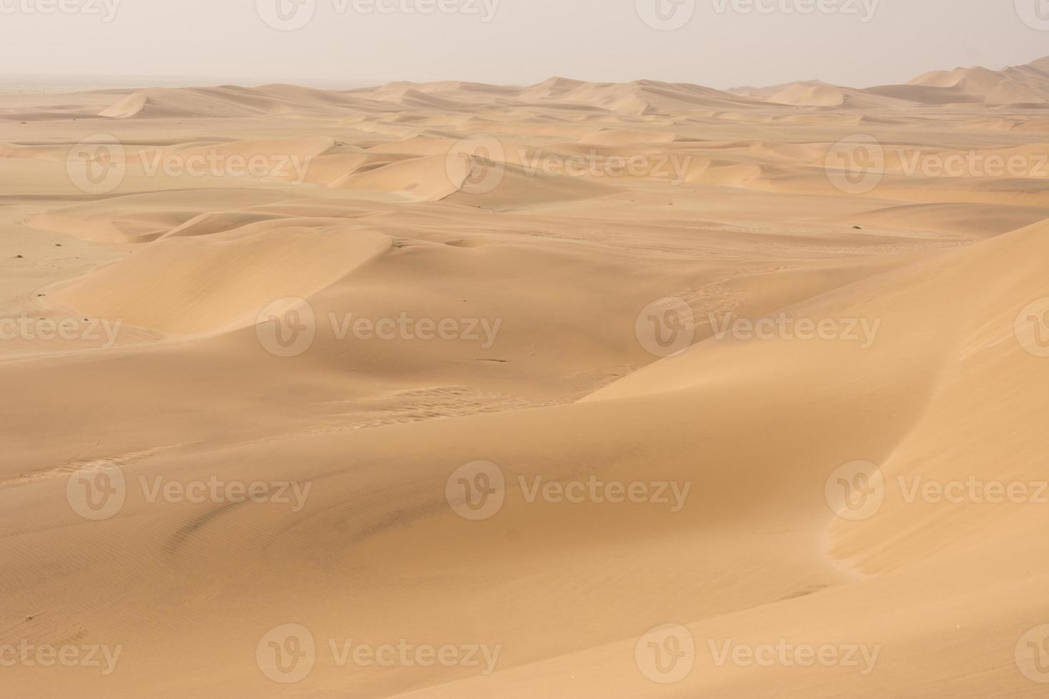 desierto de namibia foto