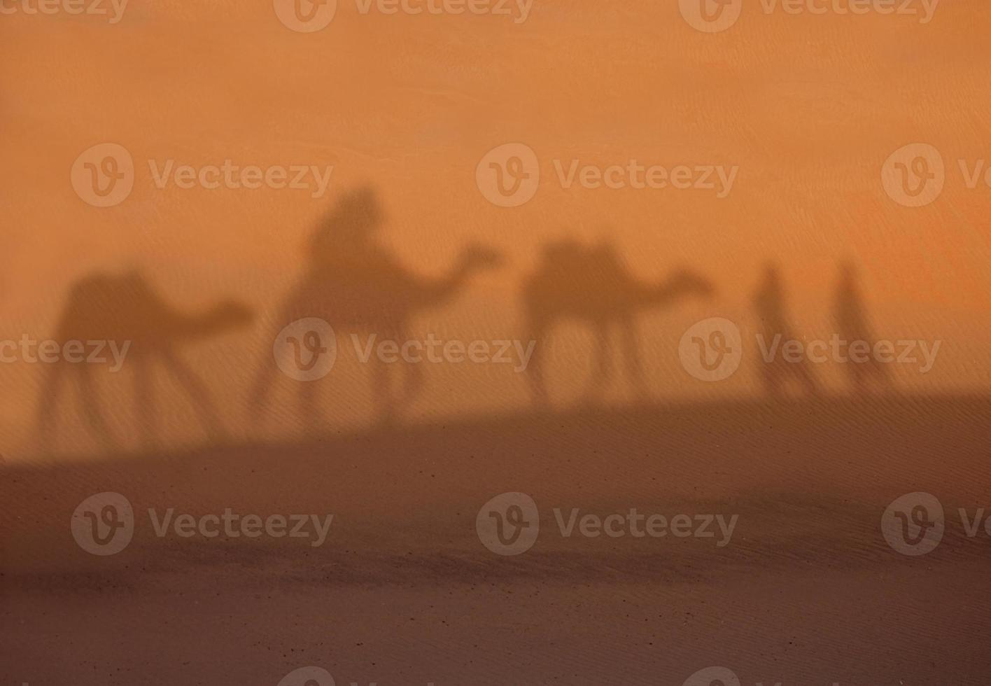 Desert shadows photo
