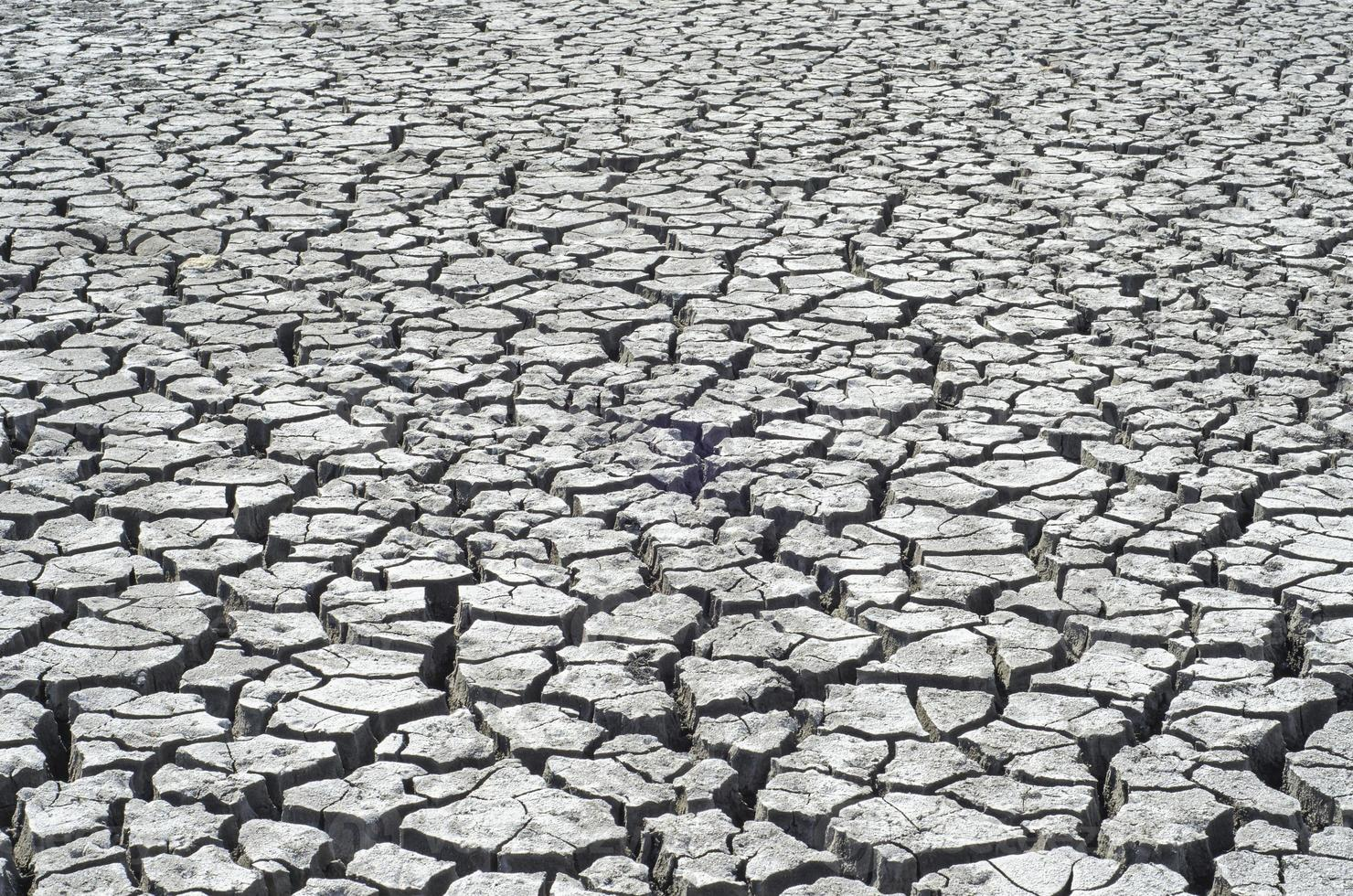 cracked surface of desert as background photo