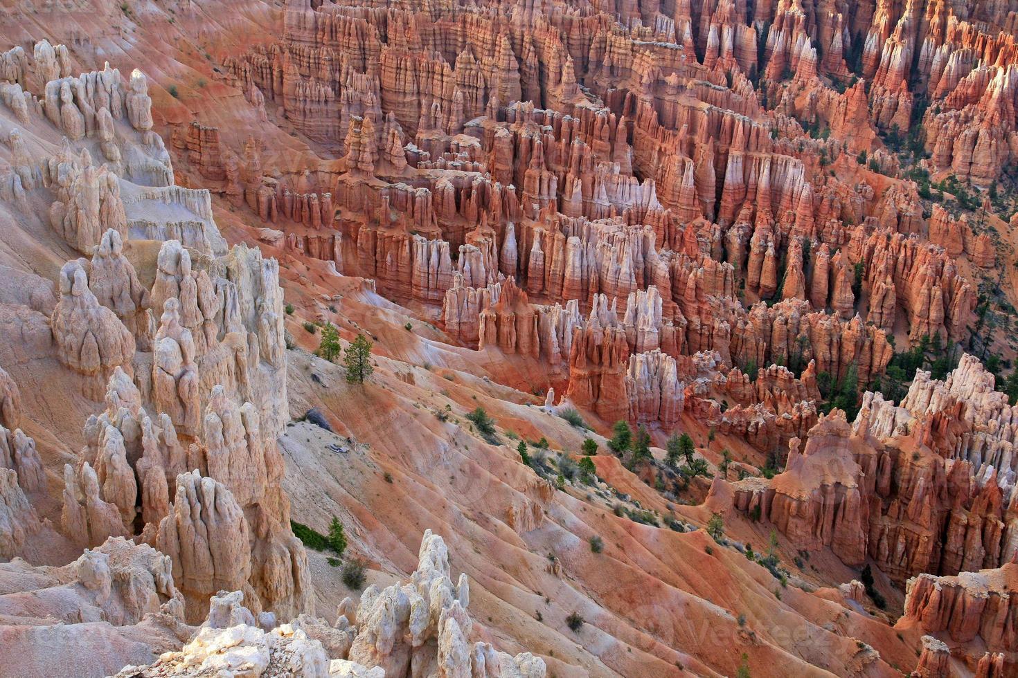 Grandes agujas excavadas por la erosión en Bryce Canyon foto