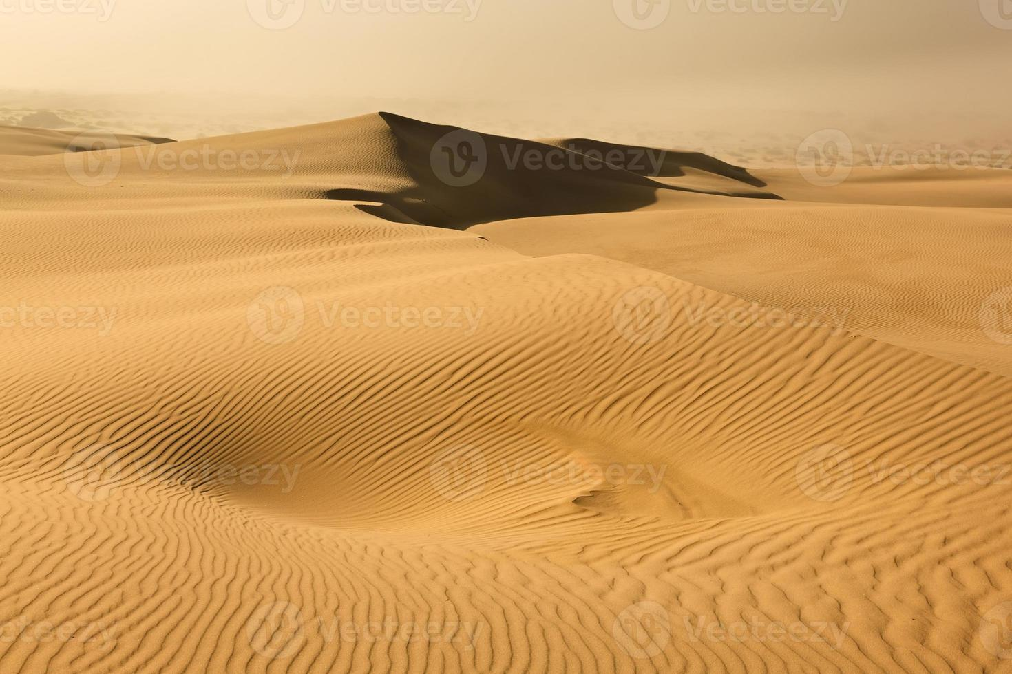 Sand Dune Dust Storm photo