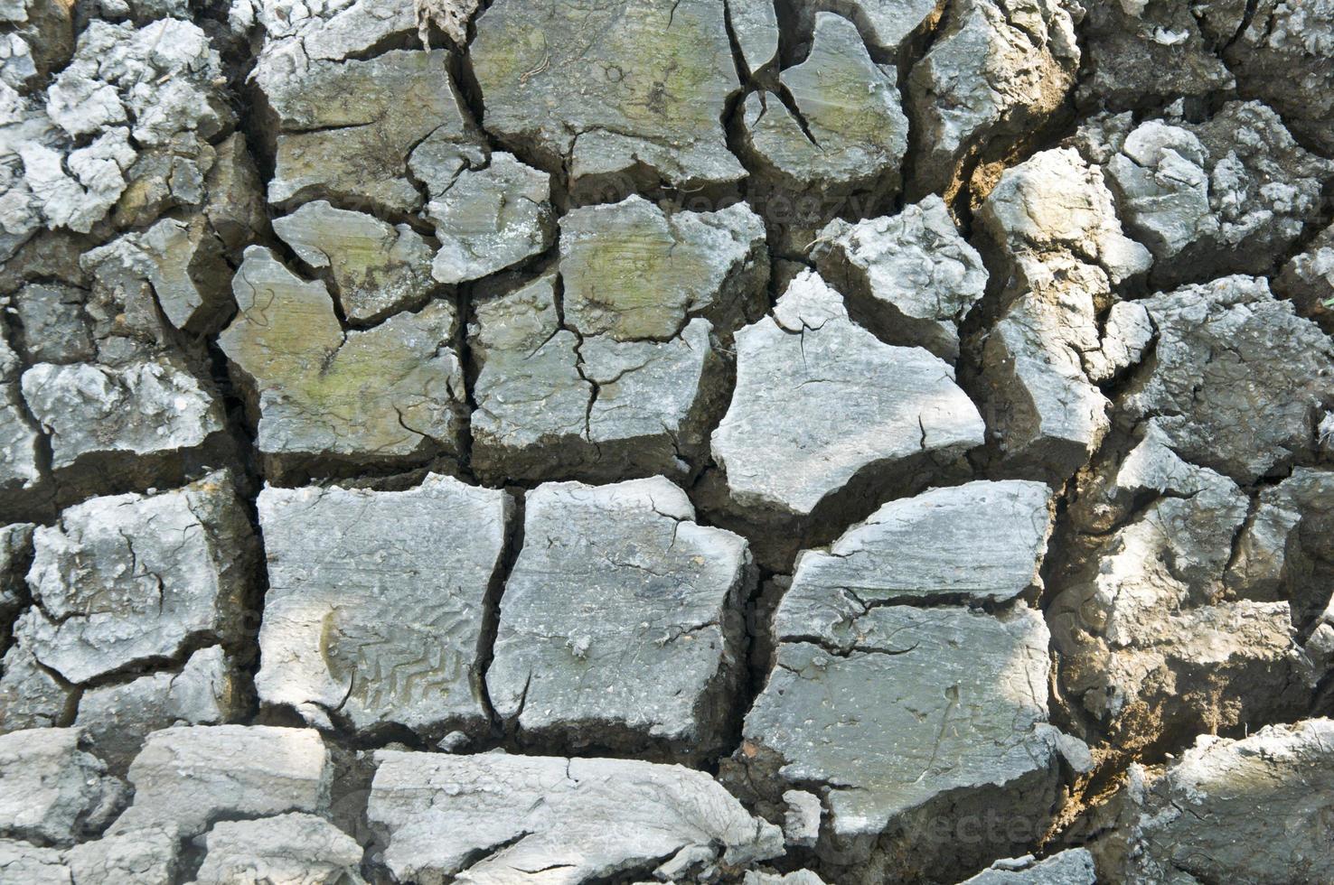 Dry ground photo