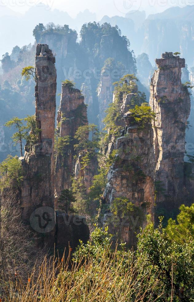 Zhangjiajie National forest park photo