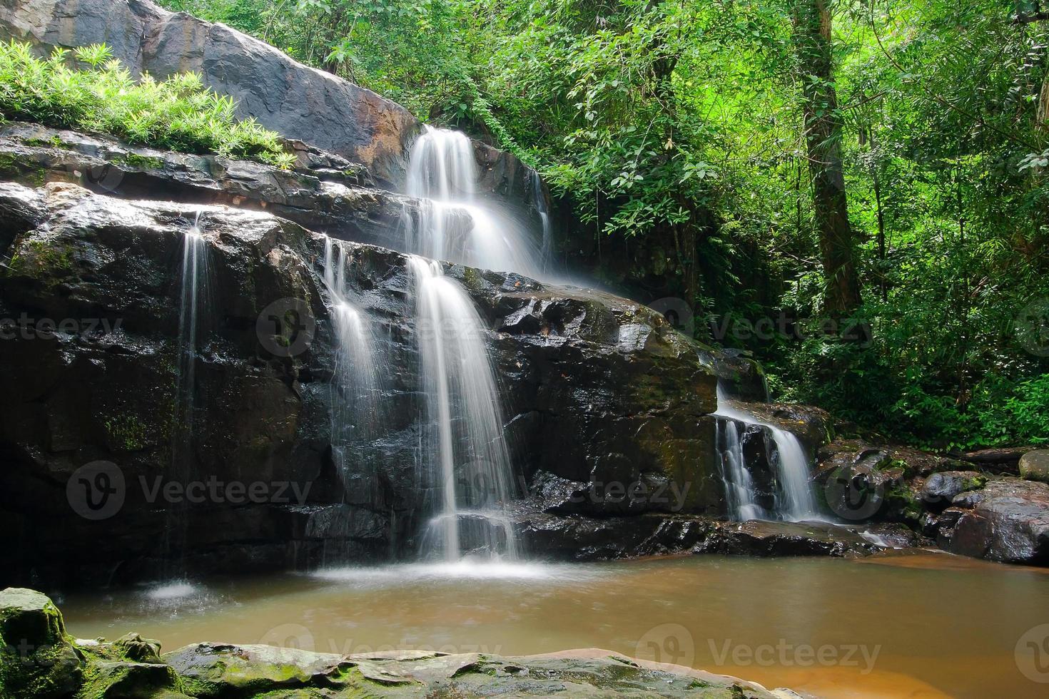 cascada en el bosque foto