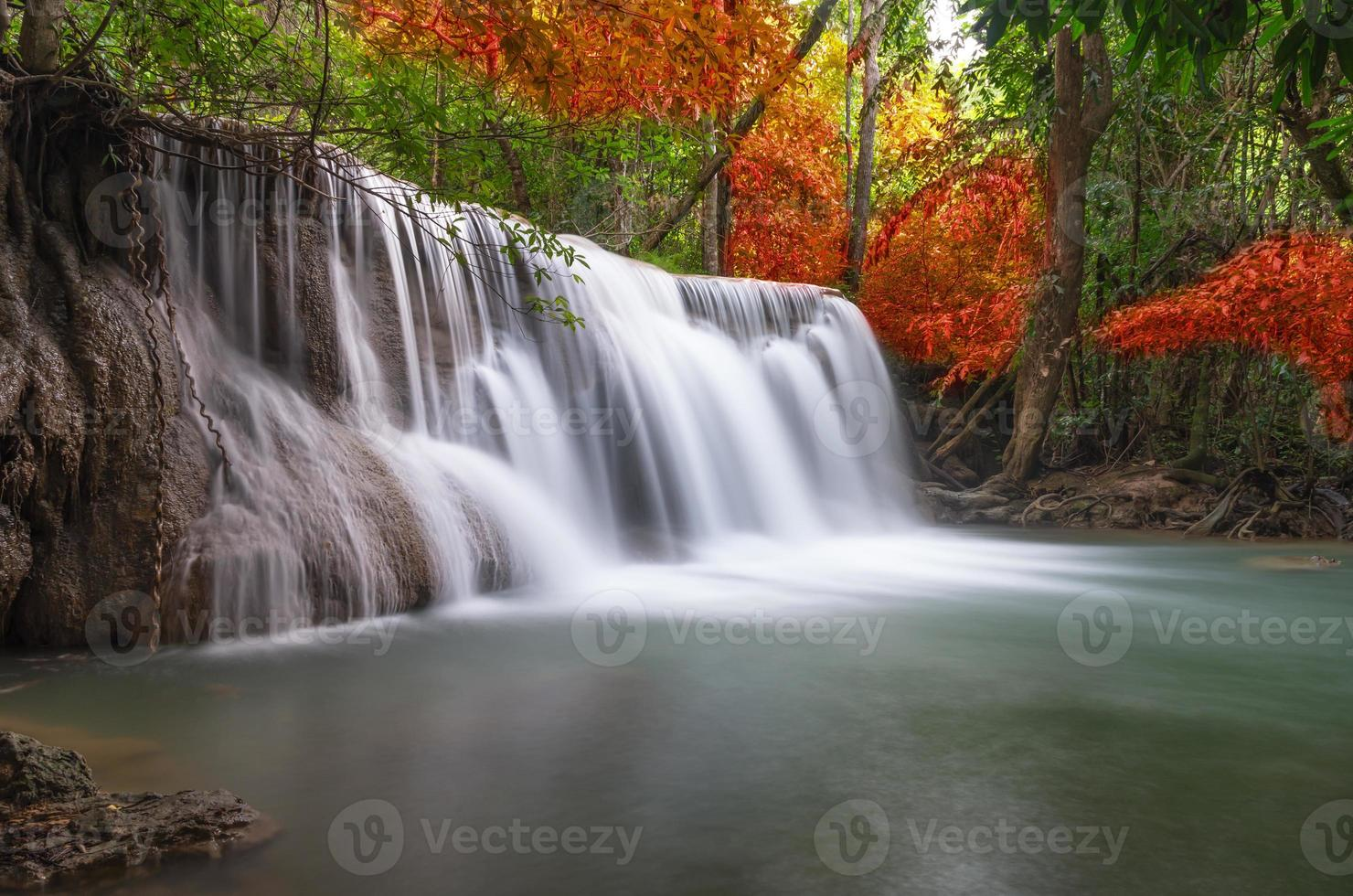 Beautiful waterfall in the forest photo