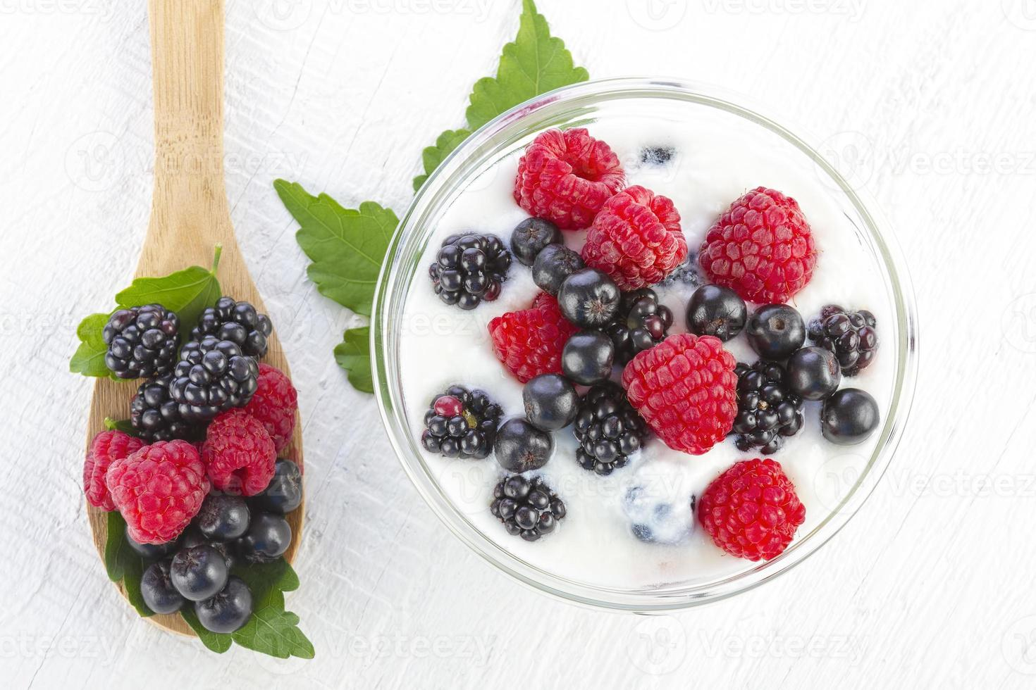 Yogurt with forest berries in a bowl photo