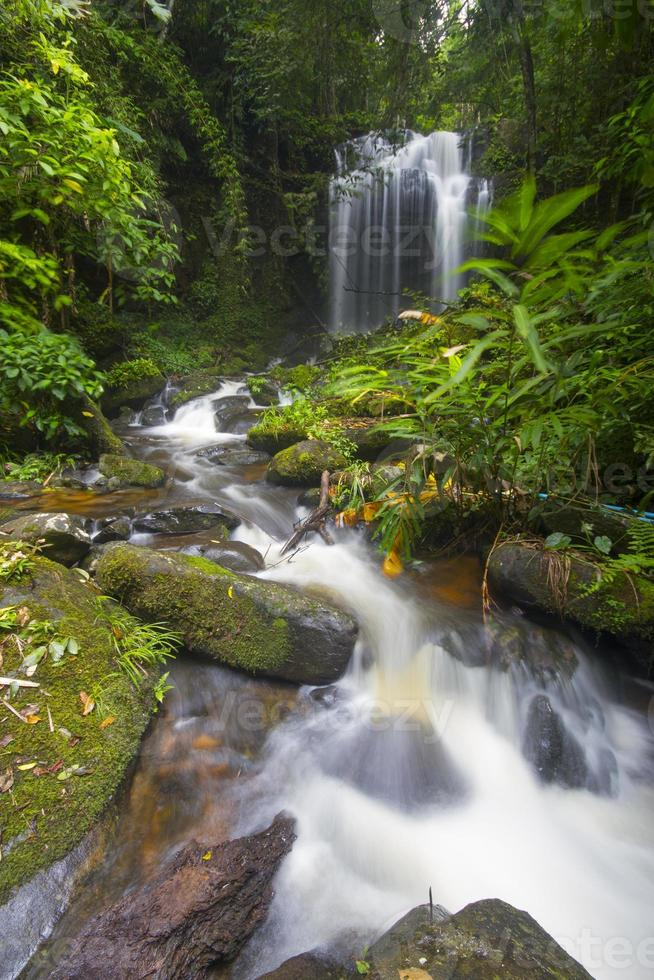 waterfall in deep forest of Thailand. photo