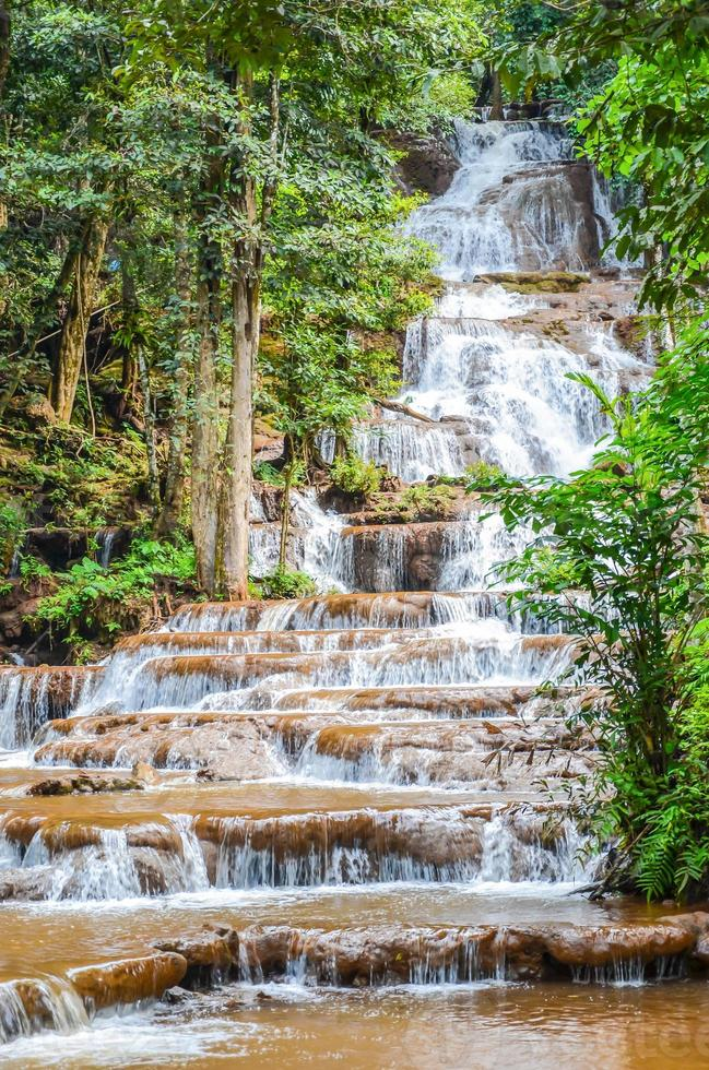 cascada tropical en el bosque foto