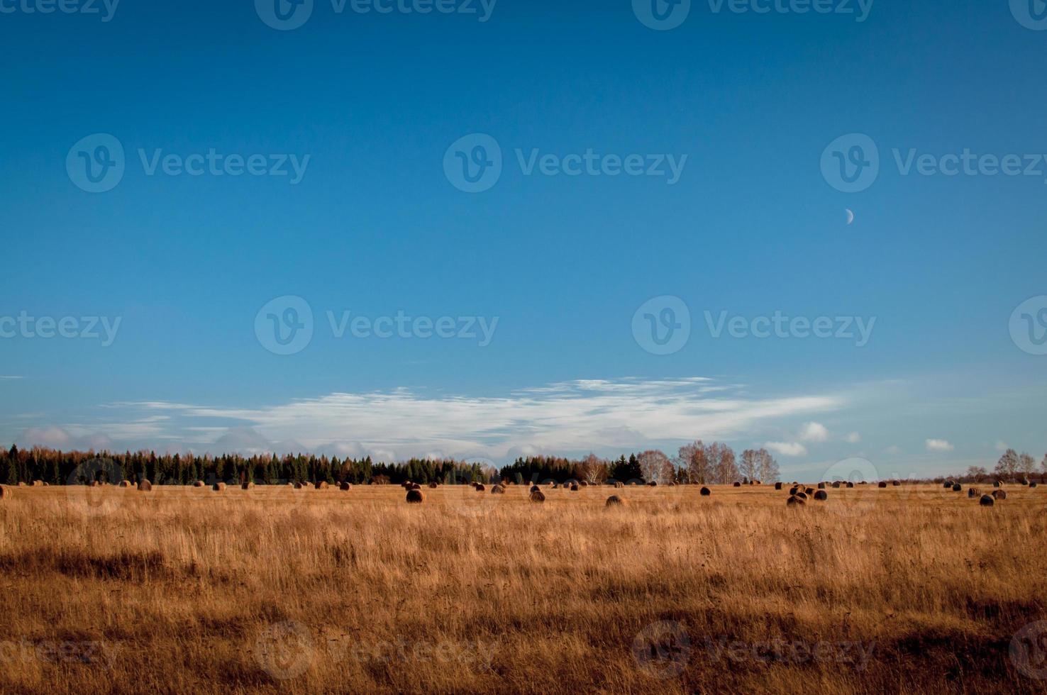 landscepe in Russia photo