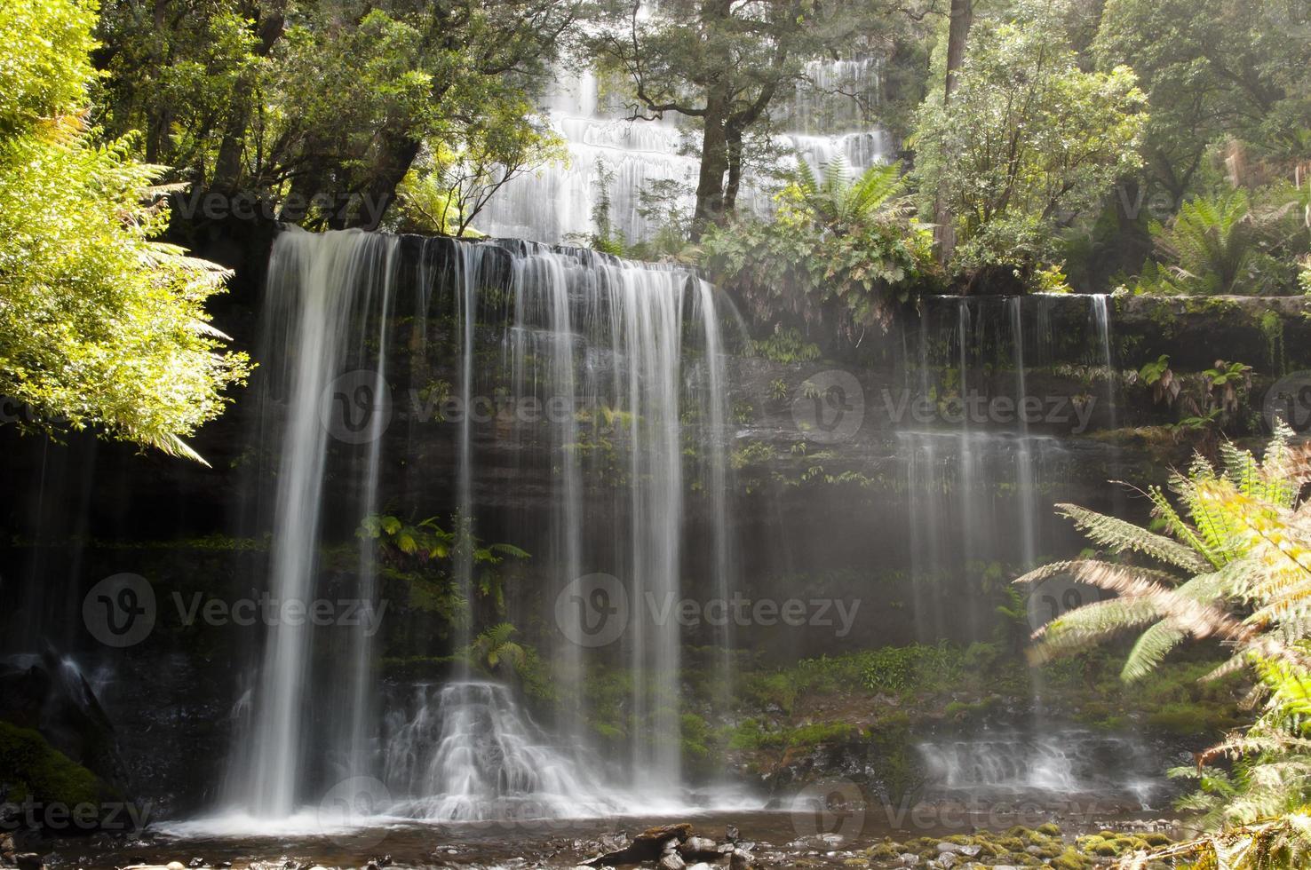Parque Nacional Mount Field - Tasmania foto