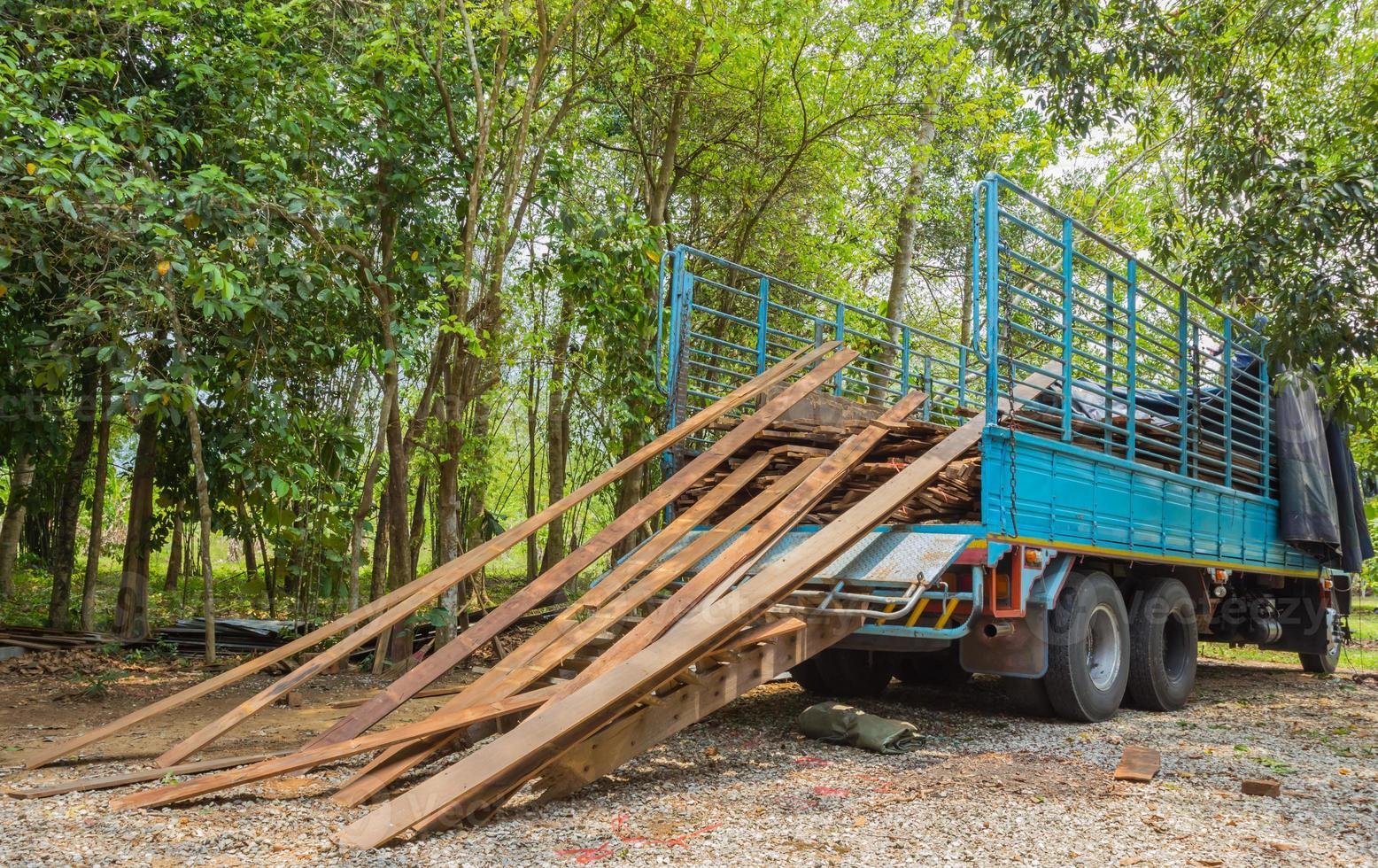 Montón de tablones viejos y camiones con fondo de bosque foto