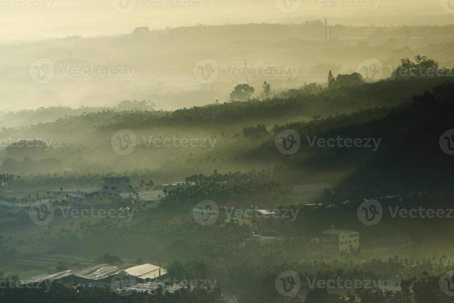 morning sunshine with fog photo