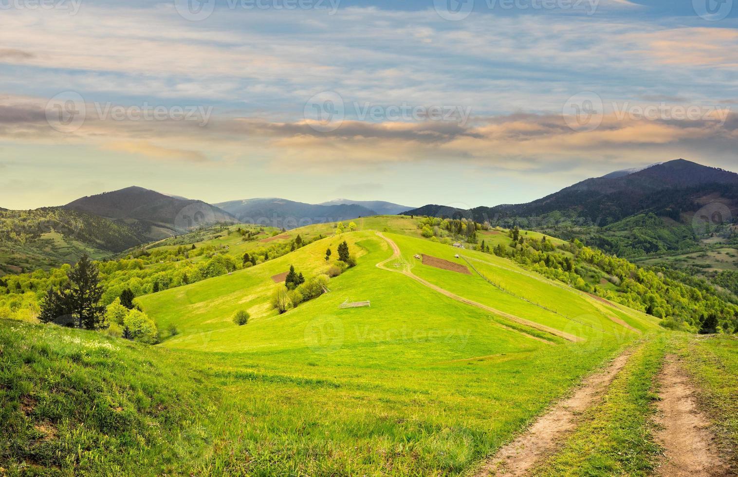 valla en la ladera de la pradera en la montaña foto