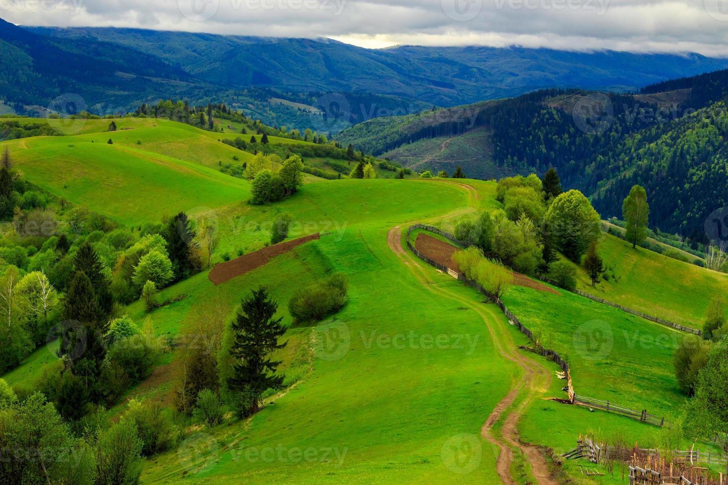 fence on hillside meadow in mountain photo