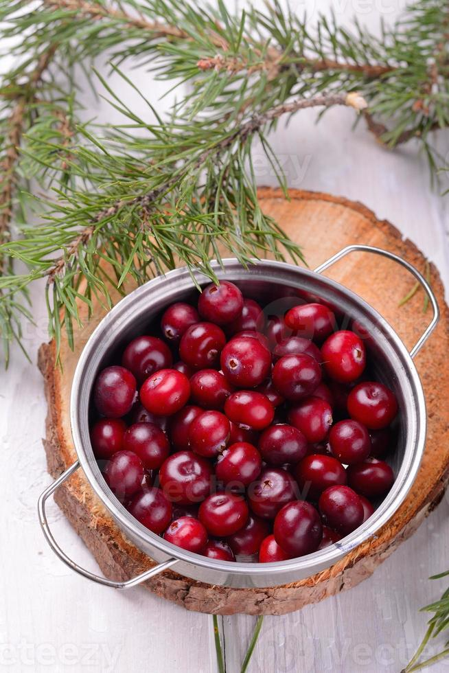 organic cranberries in the northern forest container on natural wooden photo