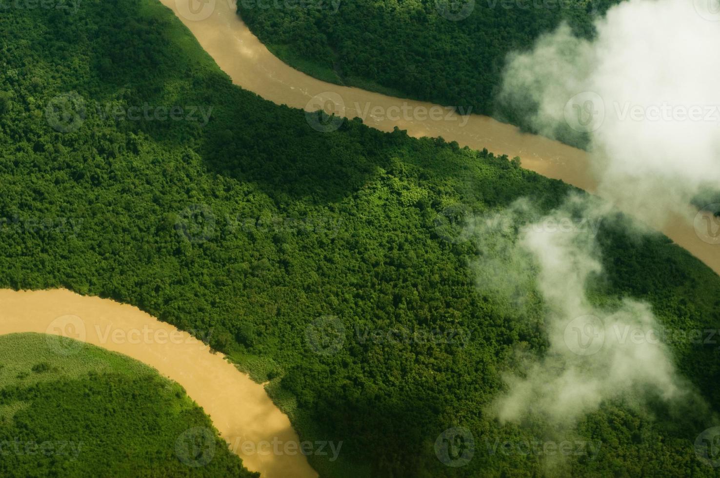 verdure aérienne photo