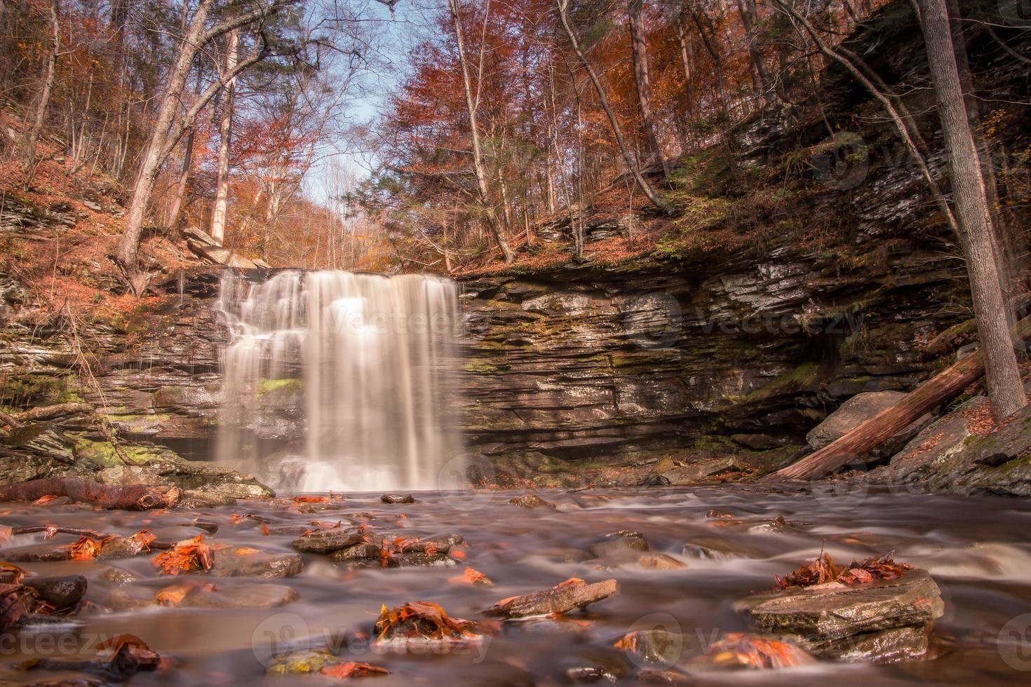 Ricketts Glen State Park foto