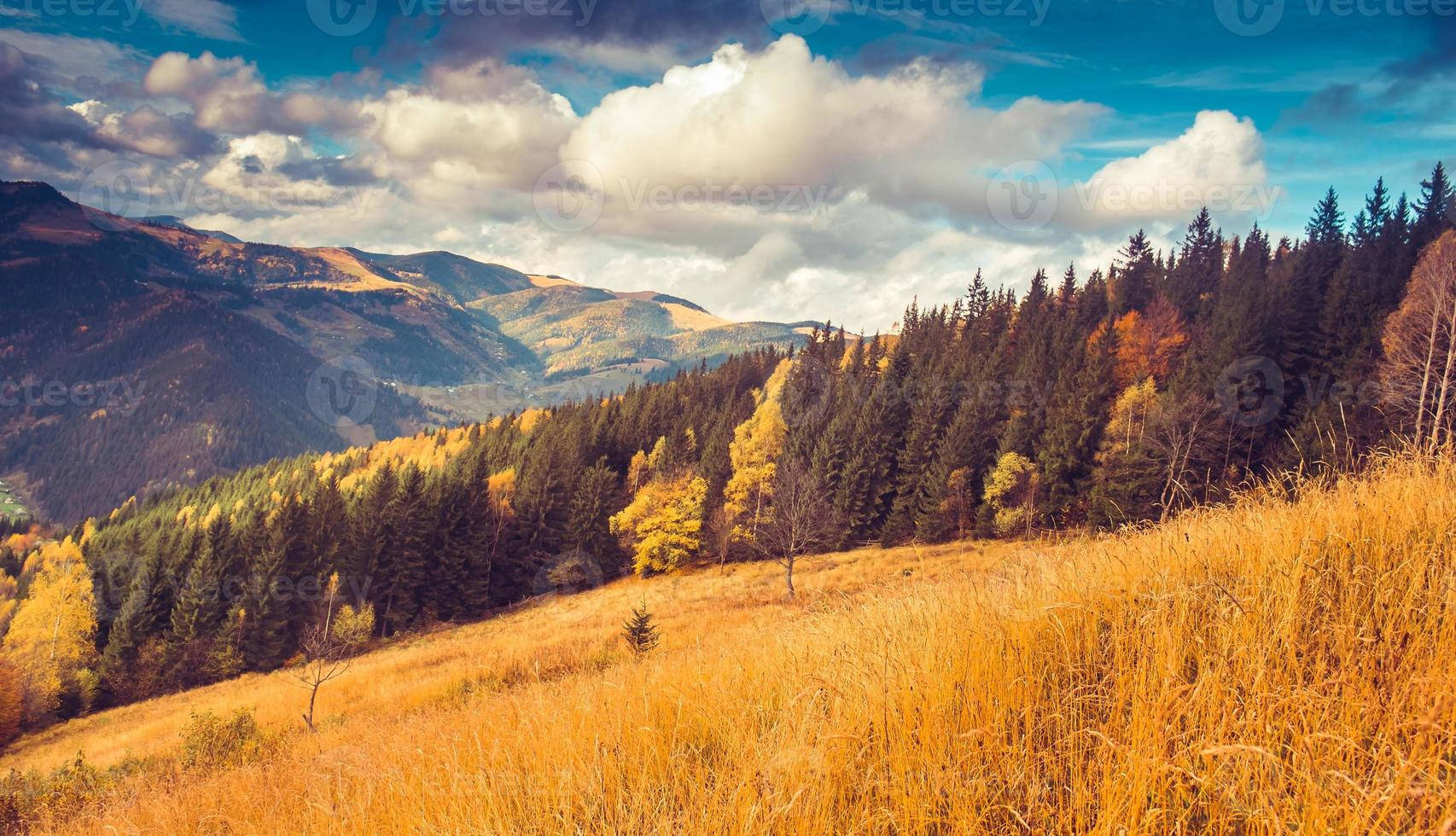 fantastiques collines ensoleillées photo