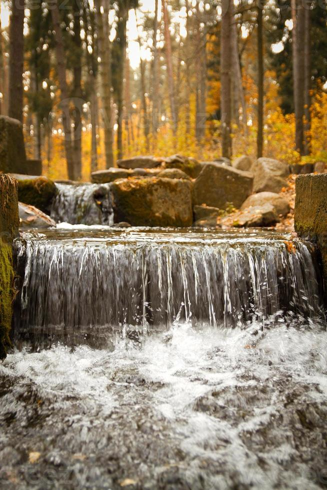 otoño dorado en el lago. foto