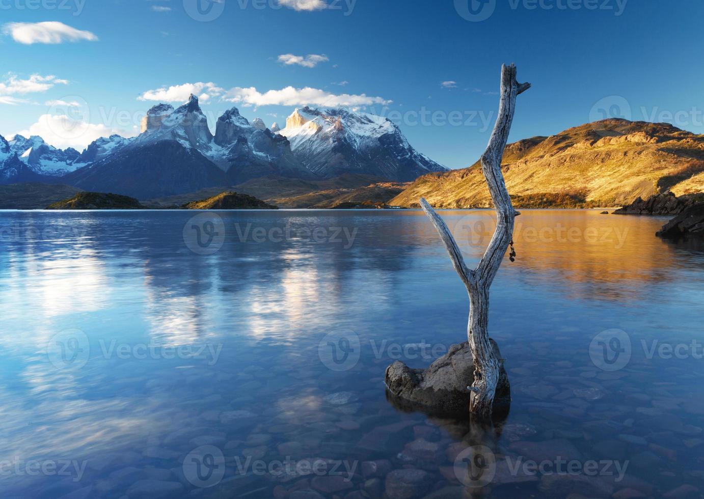 parco nazionale torres del paine, patagonia, cile foto