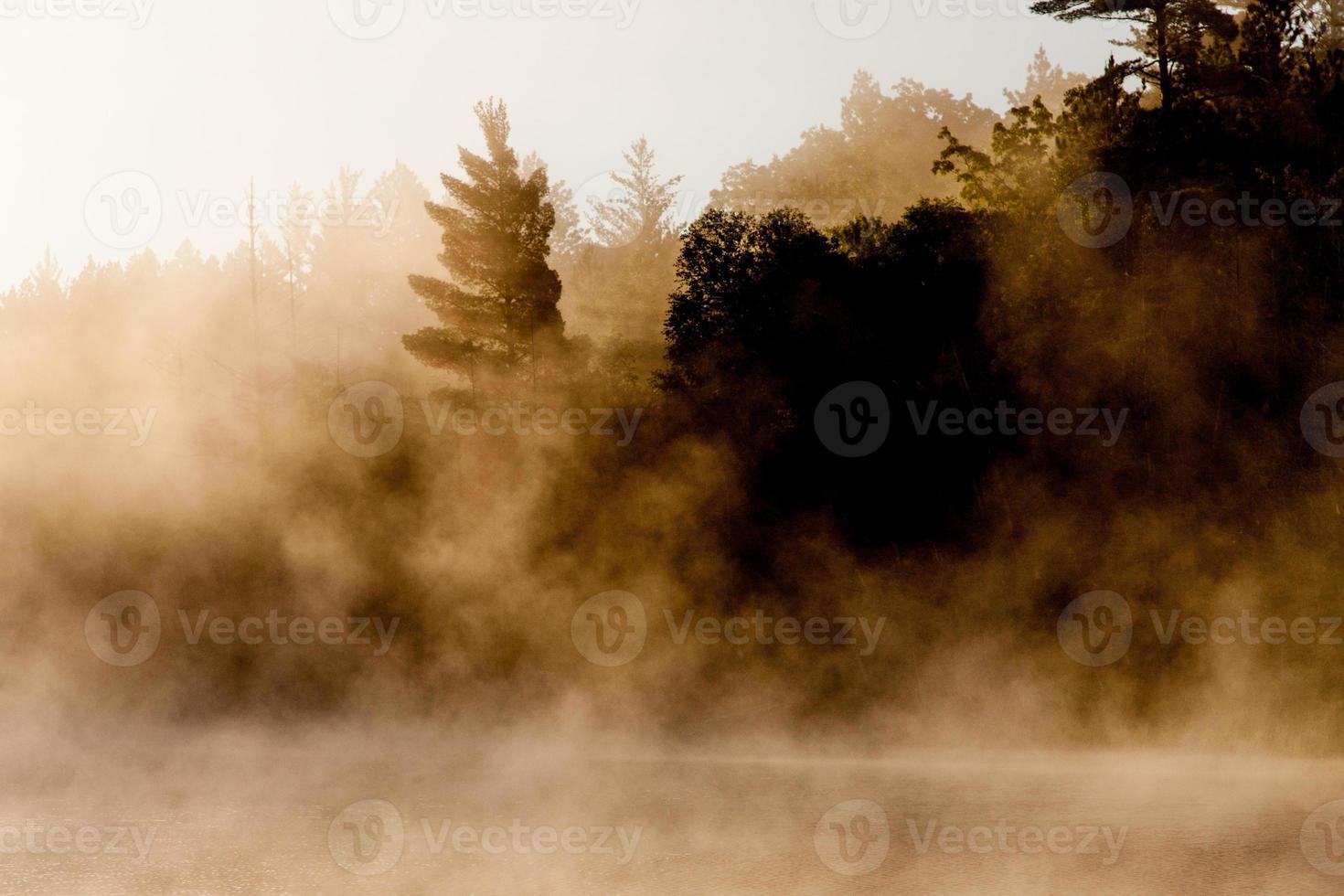 neblina densa foto