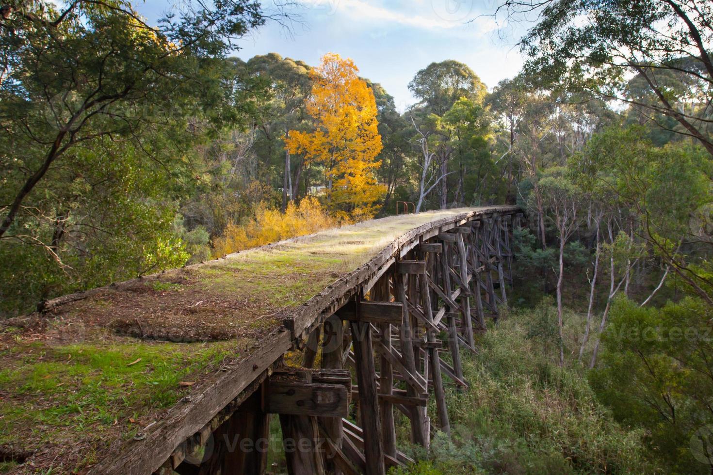 antiguo puente de caballete en koetong foto