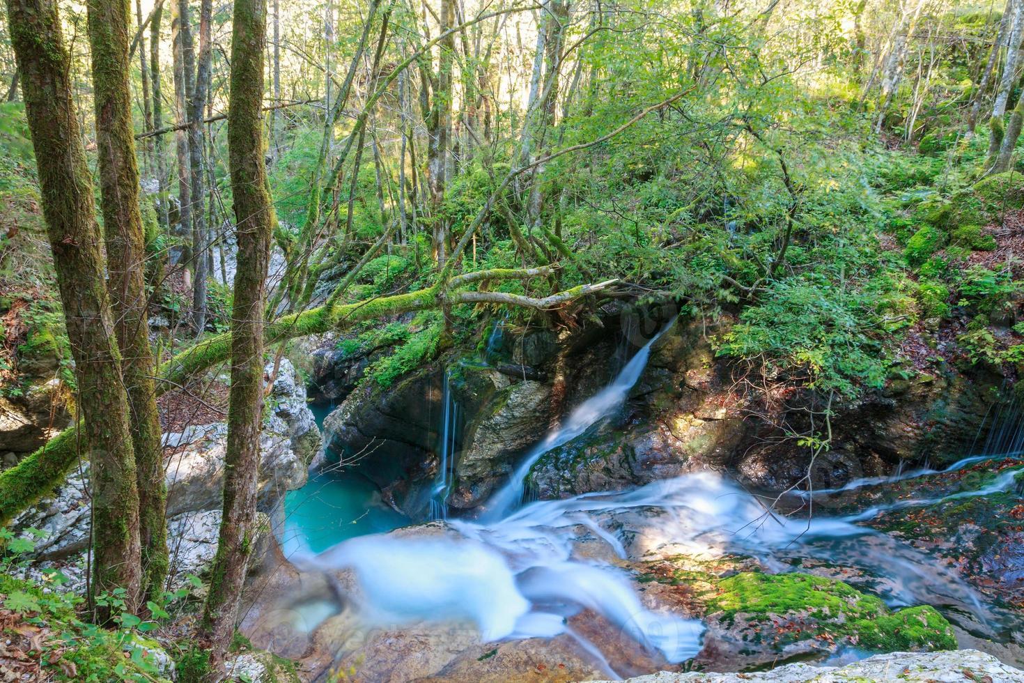 arroyo de montaña en el valle de lepena foto