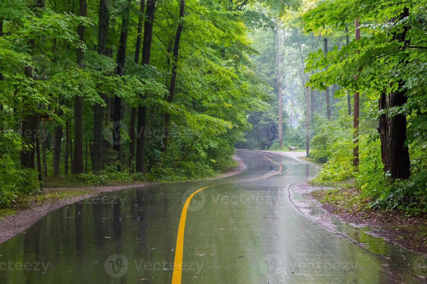 landelijke weg op een regenachtige dag foto