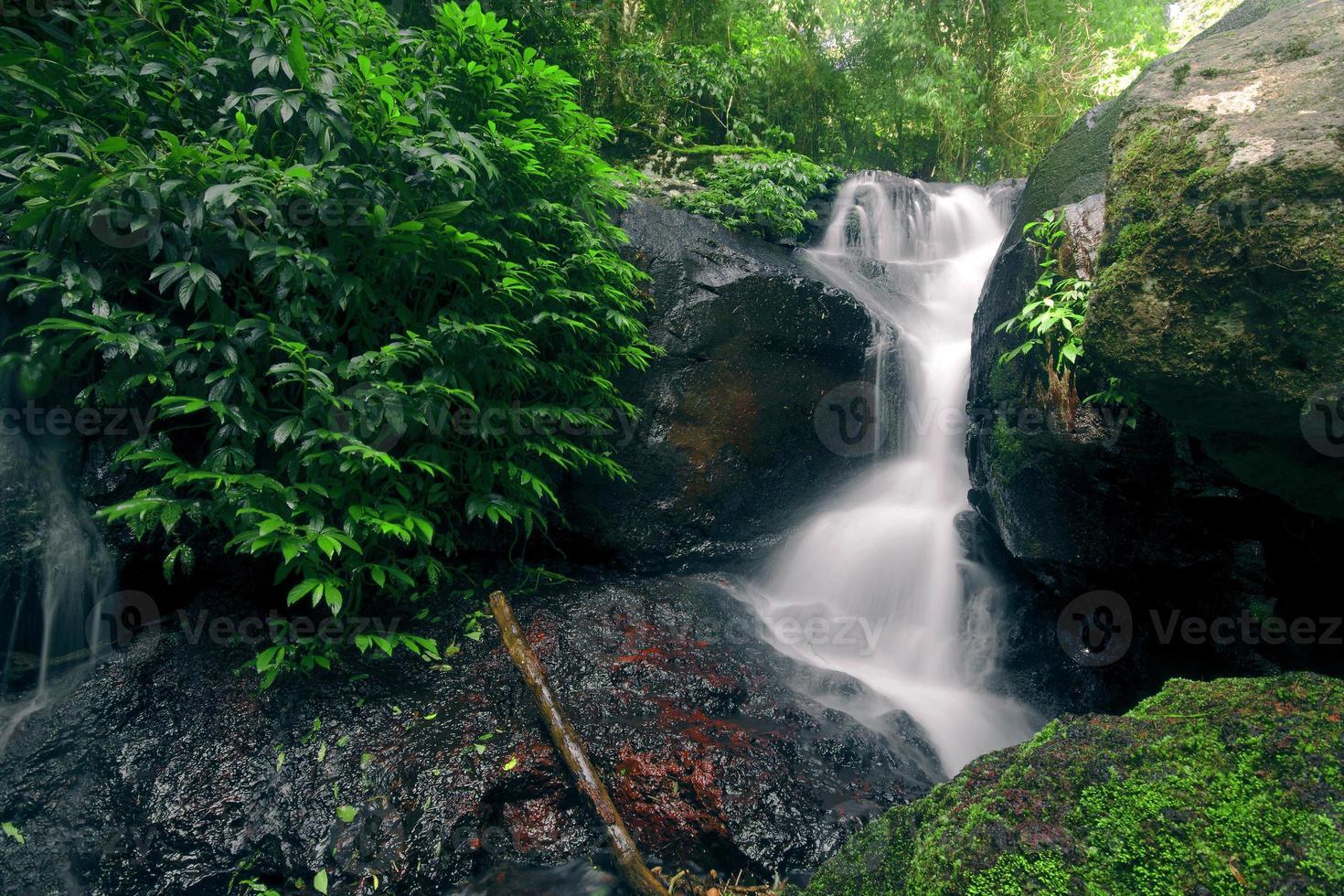 hermosa cascada foto