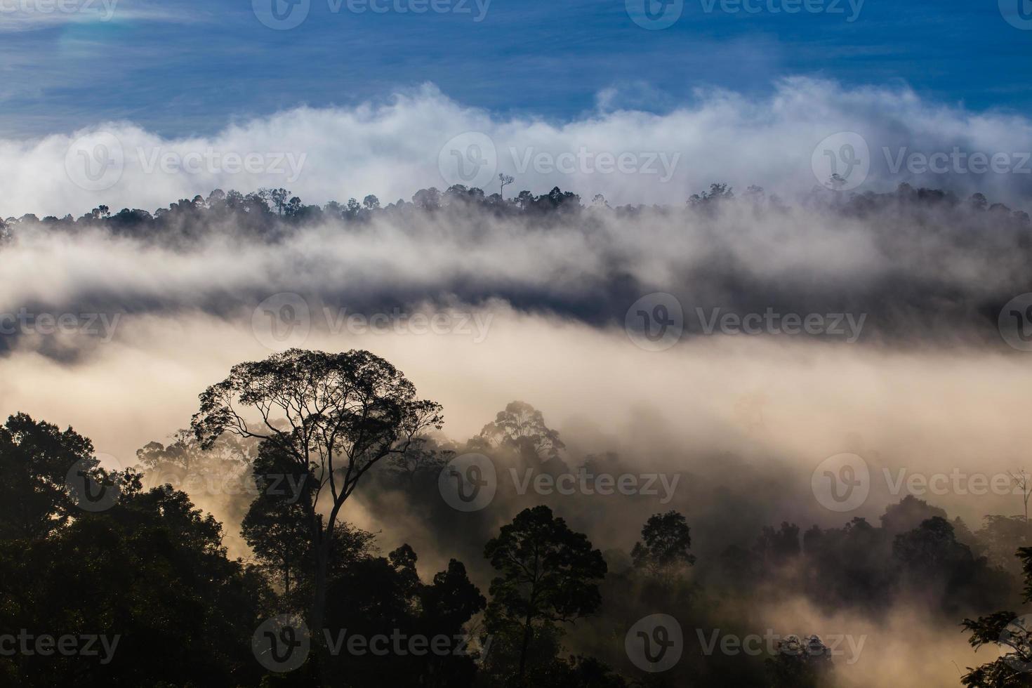 hala-bala narathiwas la vista del paisaje de la luz de la mañana (selvas foto