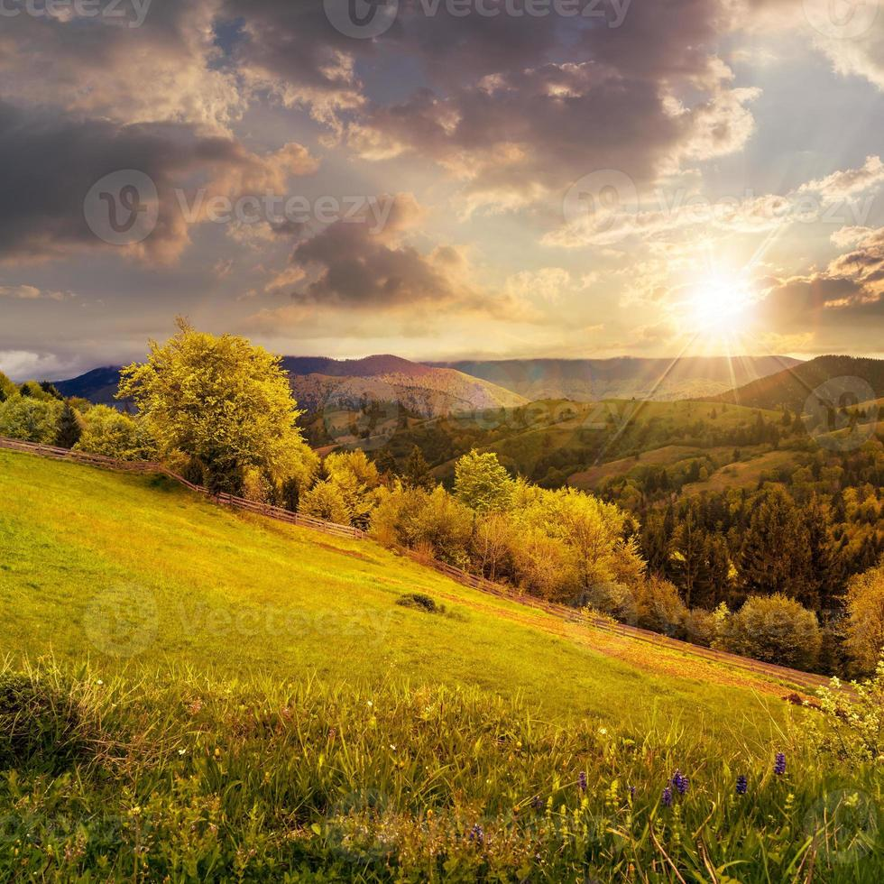 fence on hillside meadow in mountain at sunset photo