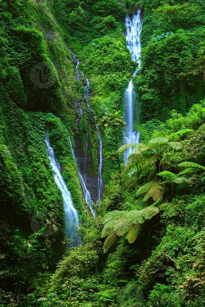 Cascada de madakaripura, este de Java, Indonesia foto