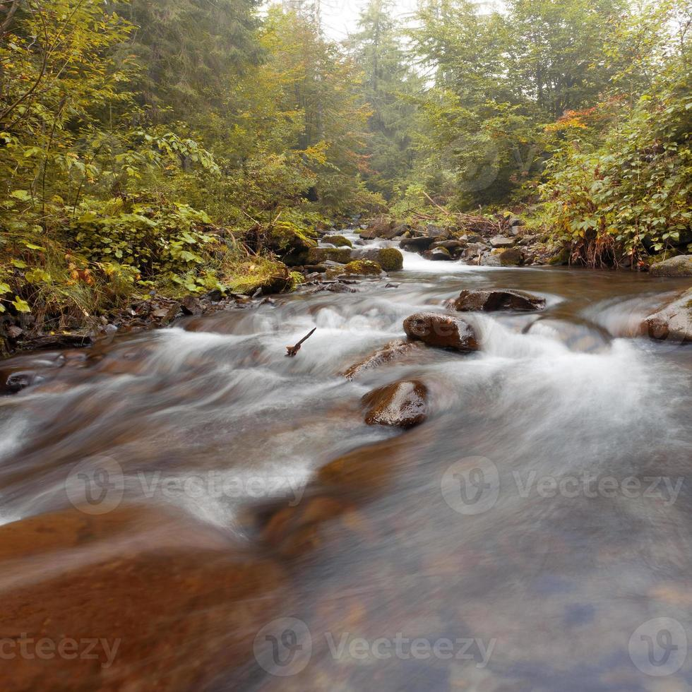 Mountain river. Foggy morning photo