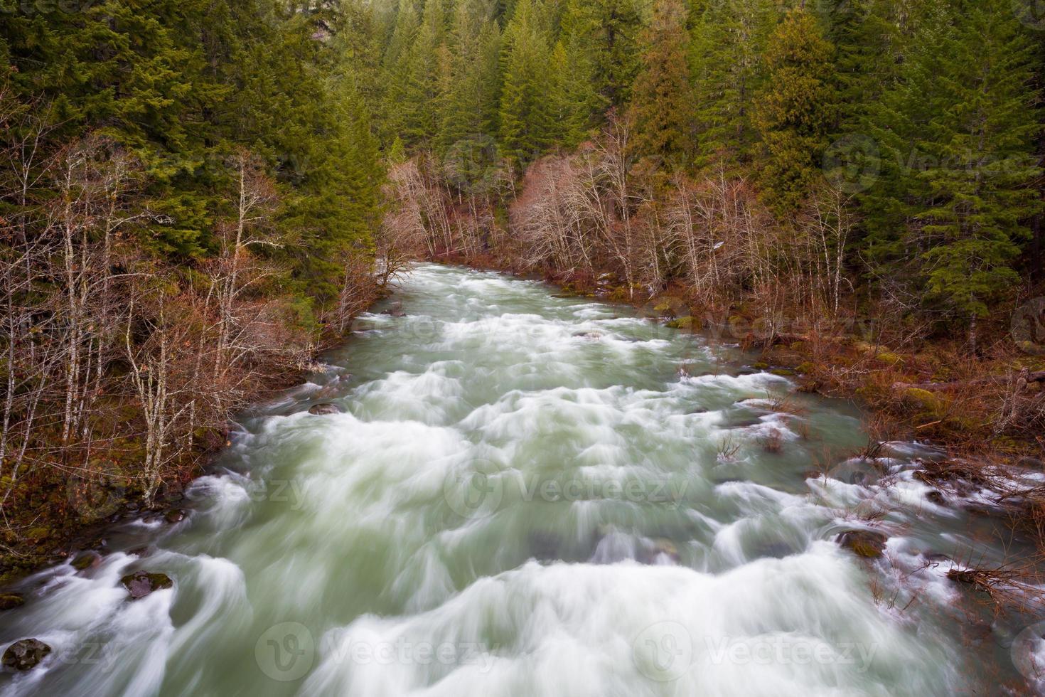paisaje del río willamette desde arriba foto