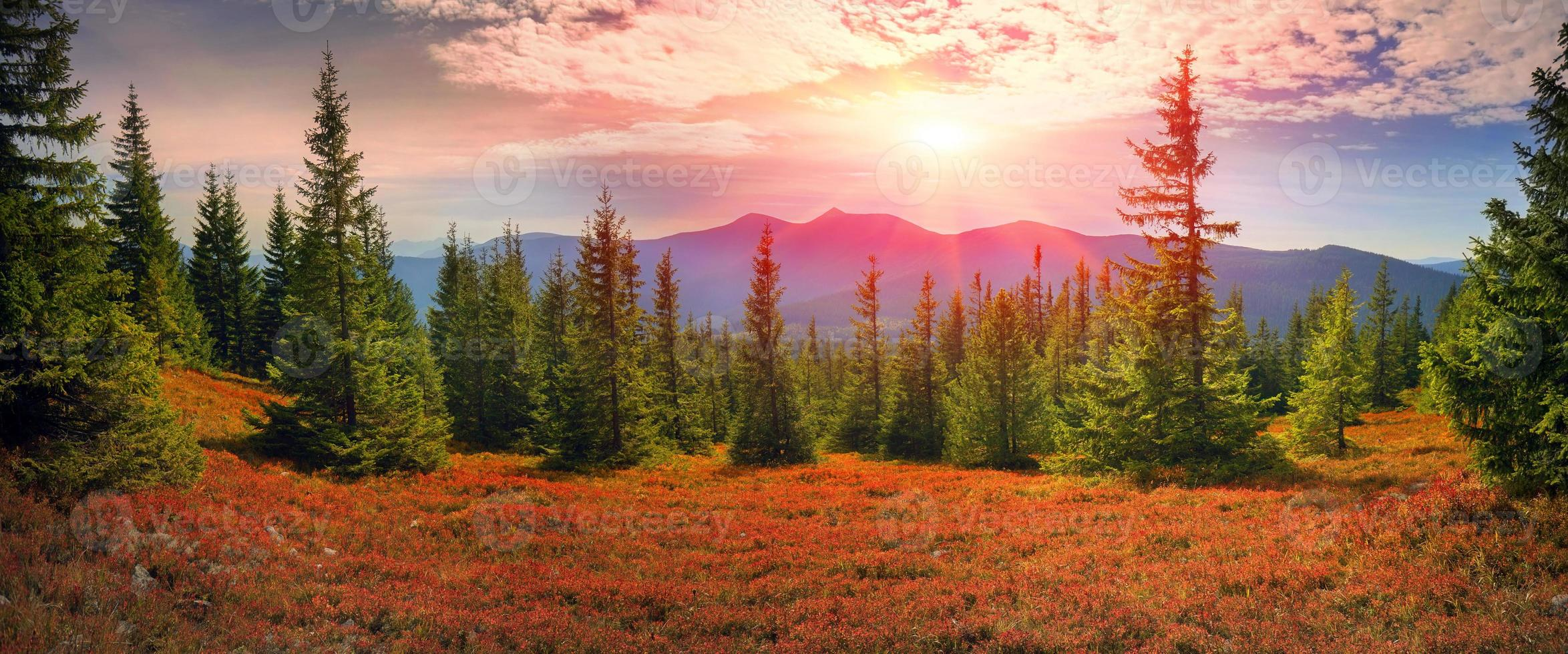 otoño alpino en gorgany foto