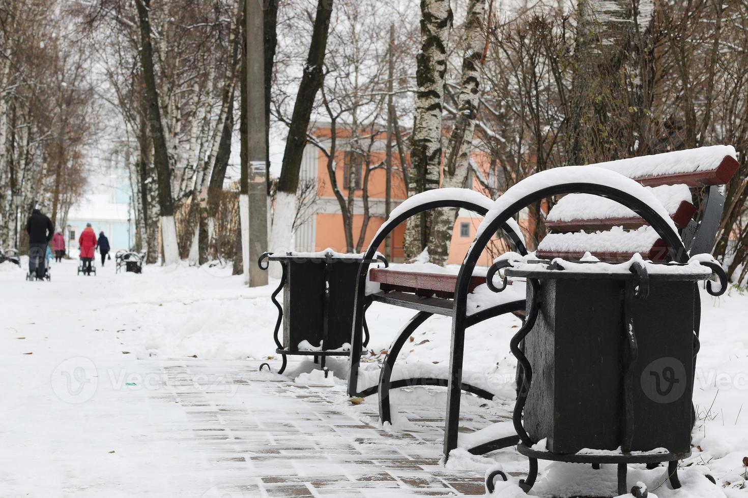 Winter bench in a park photo