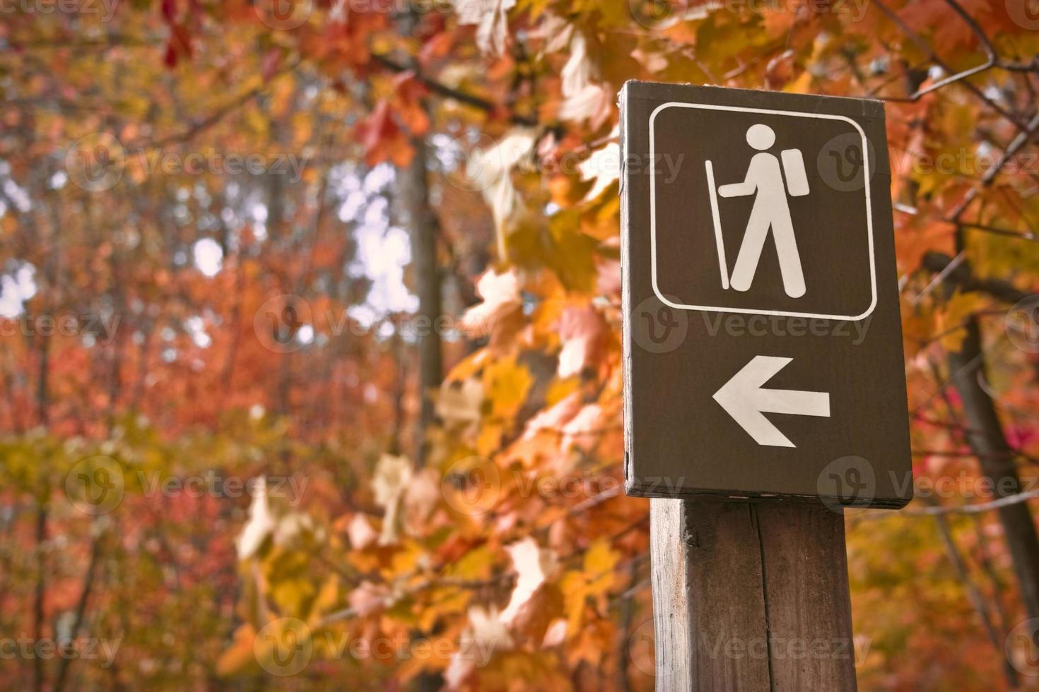 Go hiking photo