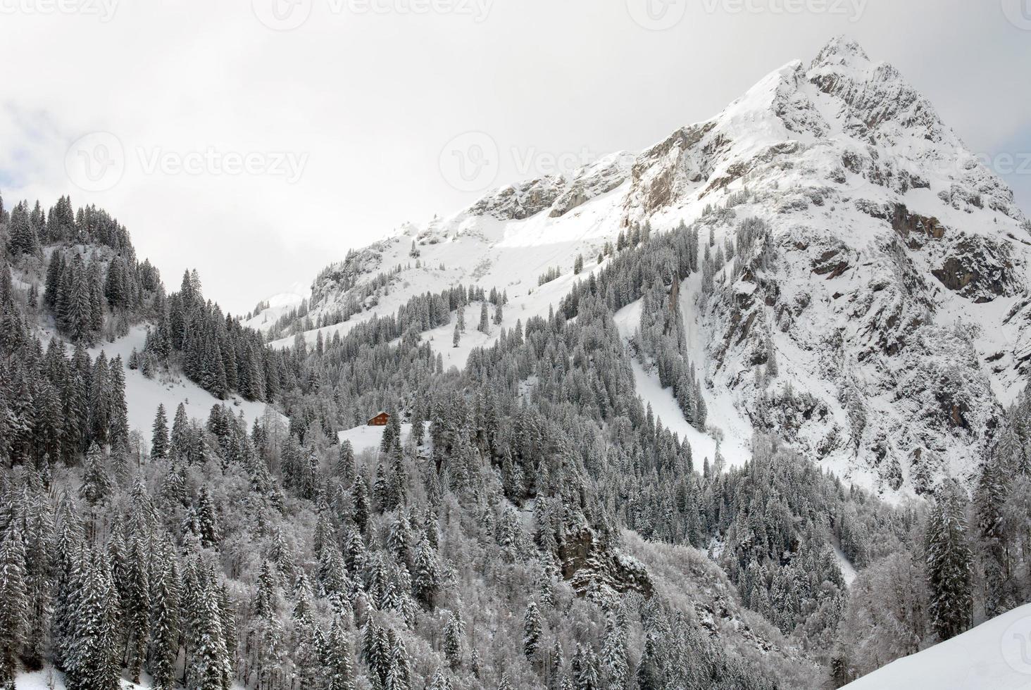 Alpine Scene, Austria photo