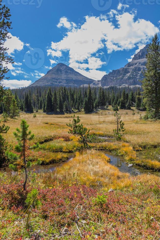 Bald Mountain and autumn meadows, Mirror Lake Scenic Byway, Utah photo