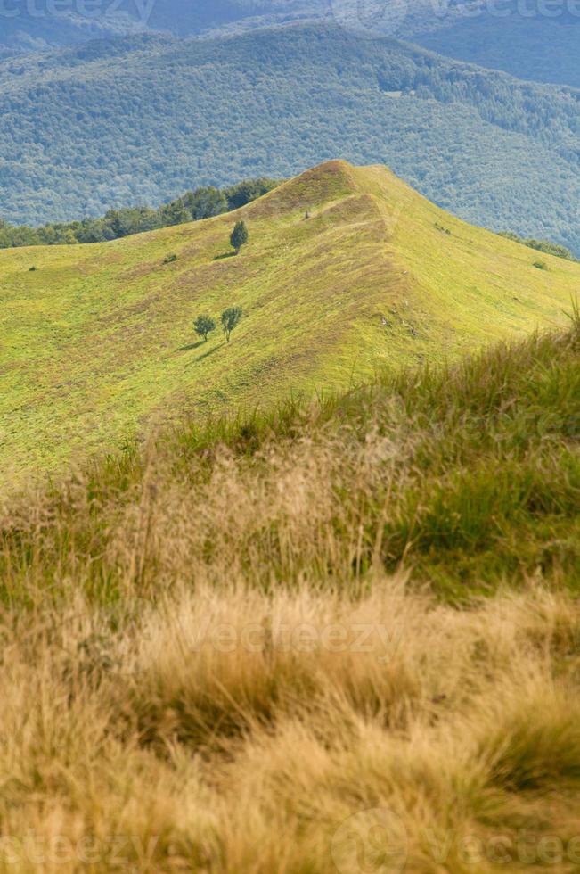 Polonina Carynska. Bieszczady Mountains. photo
