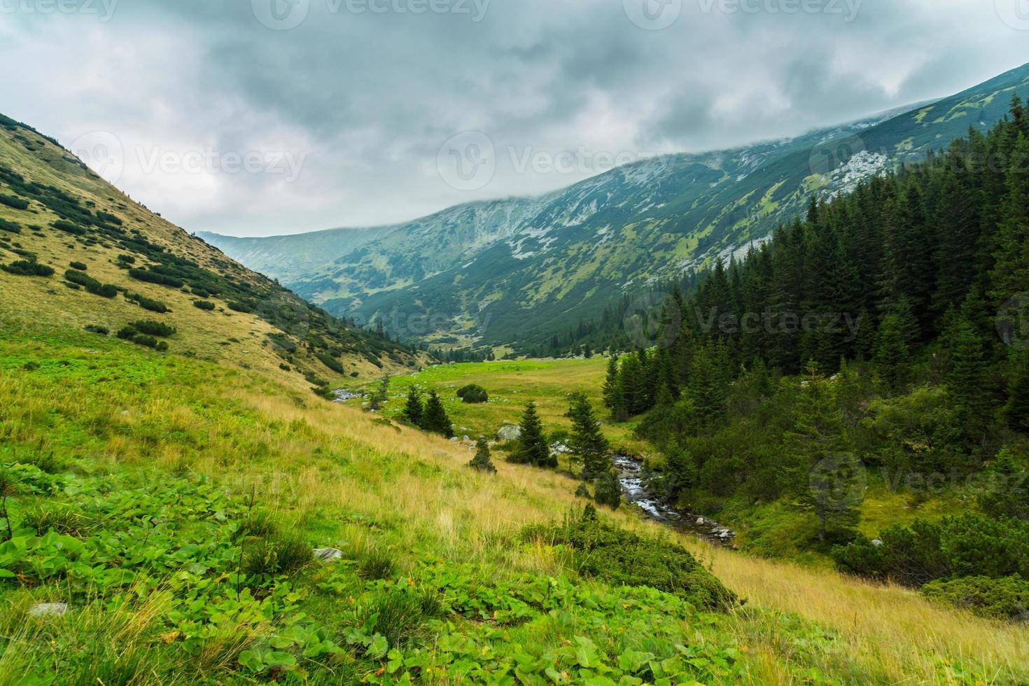 Pastoral scenery in the Alps photo