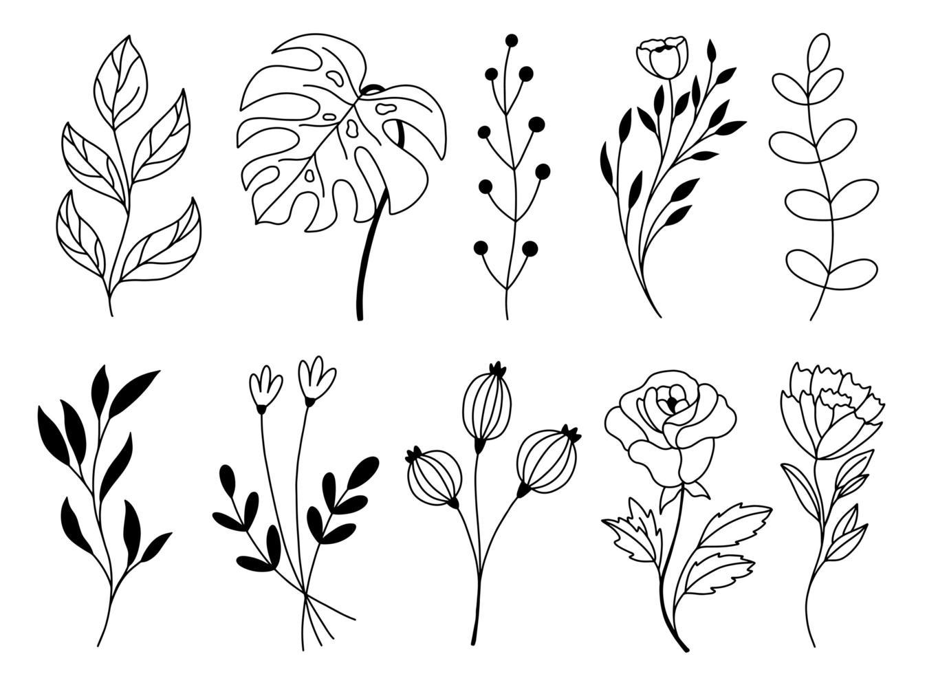 conjunto de elementos florales dibujados a mano doodle vector