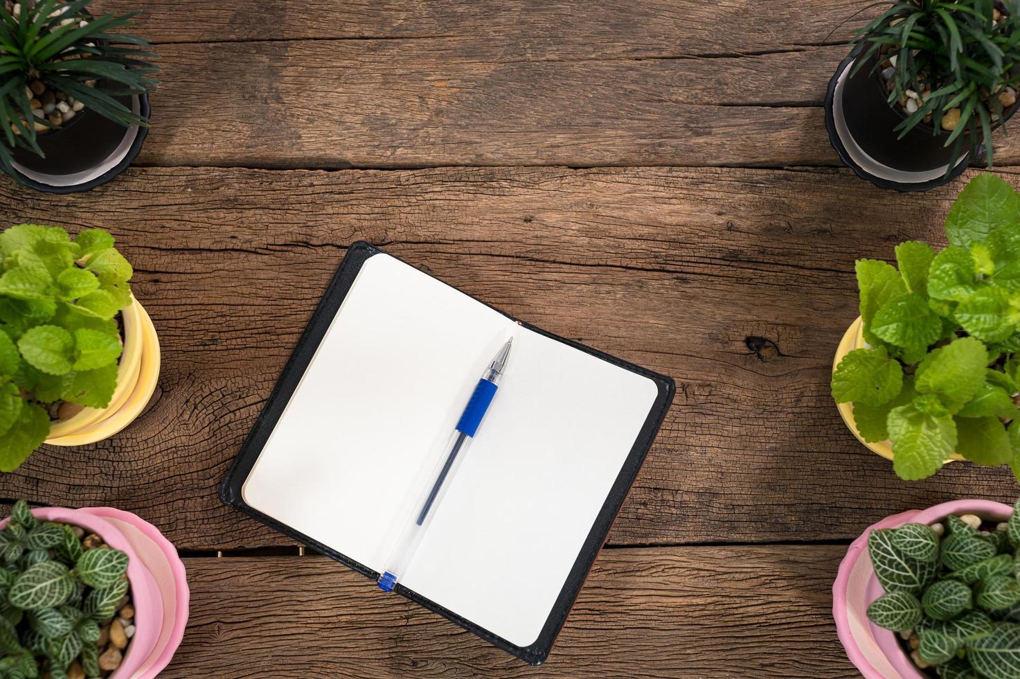cuaderno con bolígrafo y plantas foto