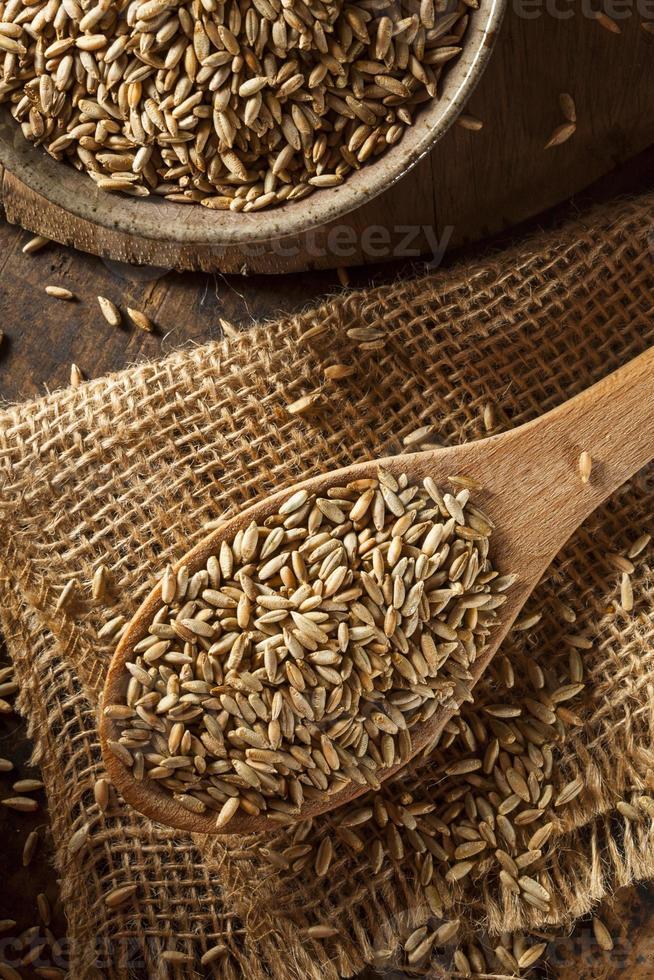 Organic Dry Raw Rye Grain photo