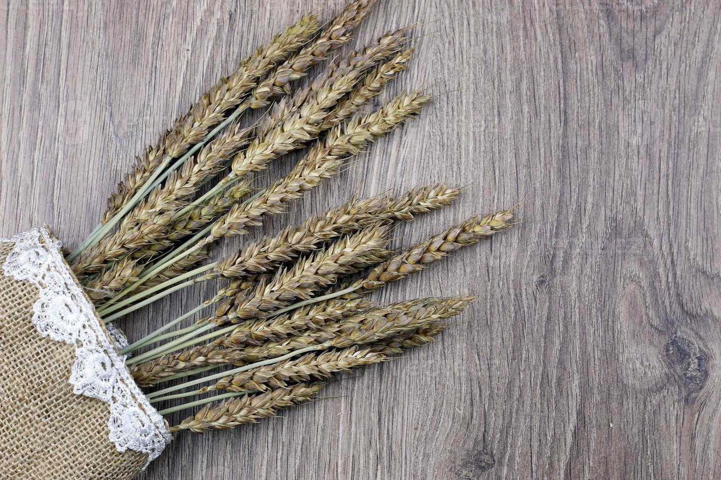 bouquet of ears of rye on canvas photo