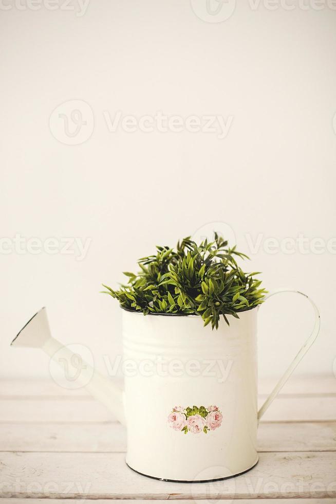 plantas verdes en regadera retro foto